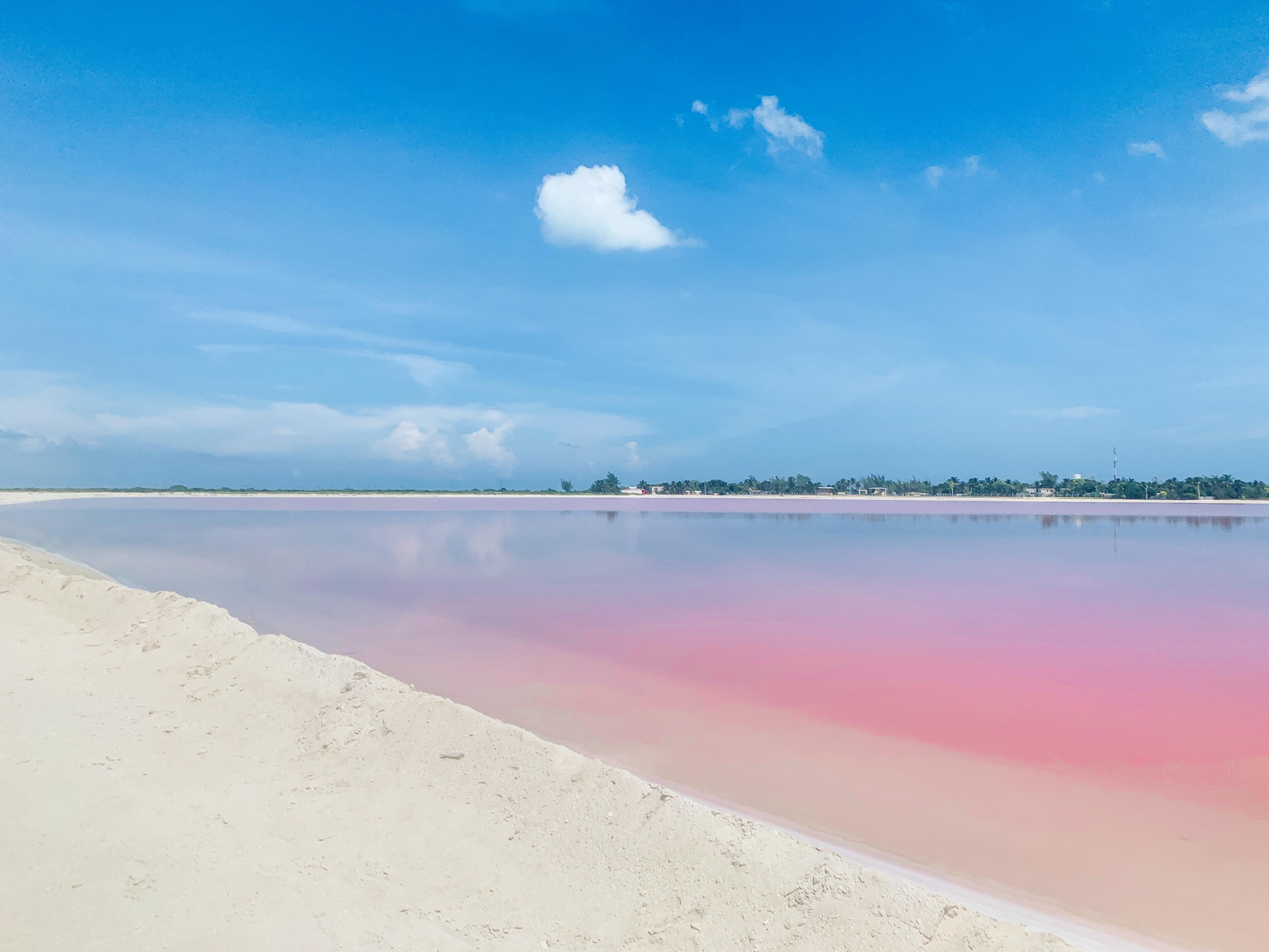 pink-lake-las-coloradas